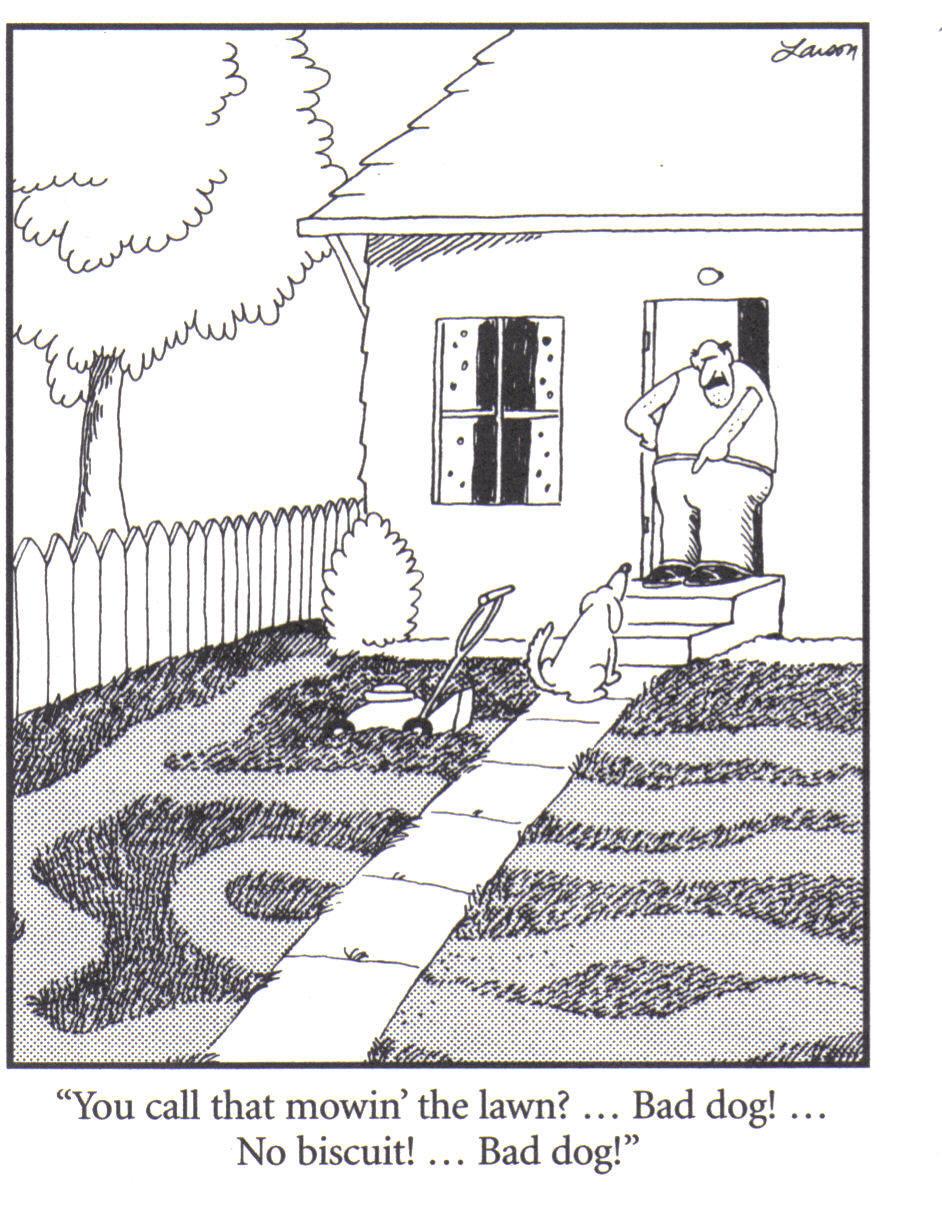 dog-mowing-lawn-cartoon.jpg