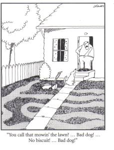 Dog mowing lawn cartoon