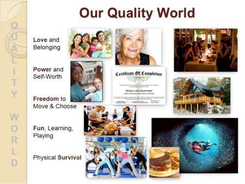 ourqualityworld