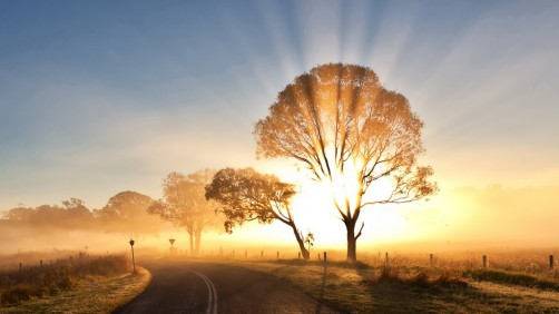 sunrise-morning-mist-wearandcheer.com_-1024x576