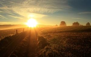 6865497-sunrise-pictures