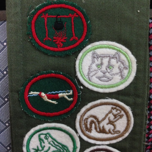 I think these badges represent Camp Crafts, Cats, Intermediate Swimming, Mammals, and Amphibians.