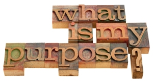what is my purpose - spiritual and philosophical question in vintage wooden letterpress printing blocks isolated on white