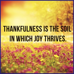 10229-ea_joy_thrives thankfulness soil design - Copy.png